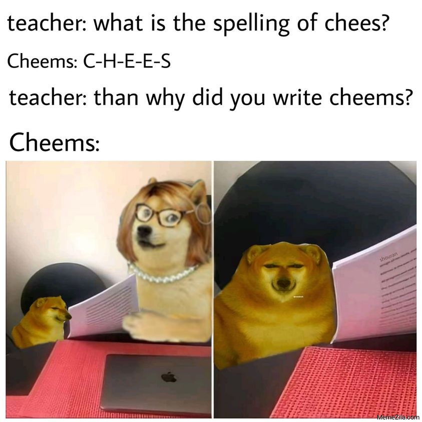 What is the spelling of chees Then why did you write cheems meme