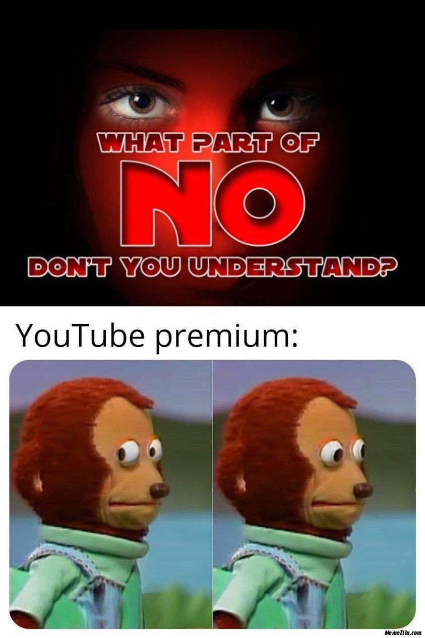 What part of no dont you understand Meanwhile youtube premium meme