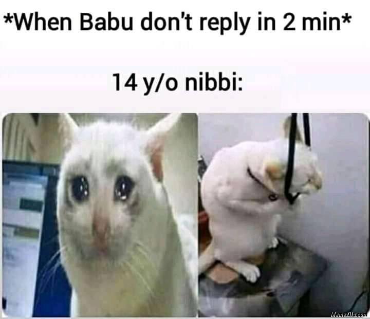 When babu dont reply in 2 min meme