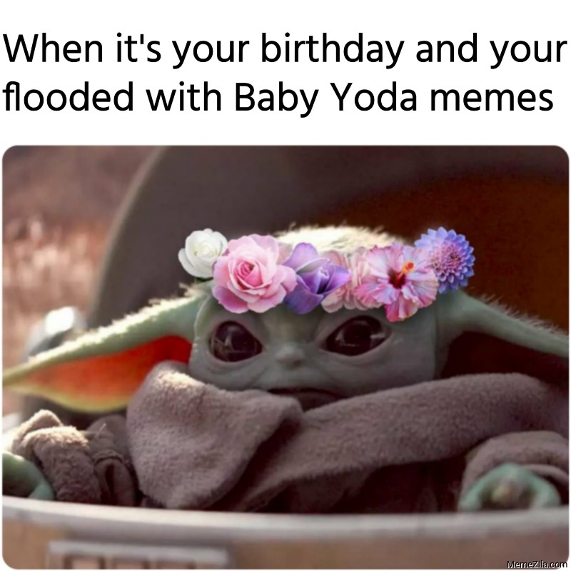 When its your birthday and your flooded with Baby Yoda memes meme