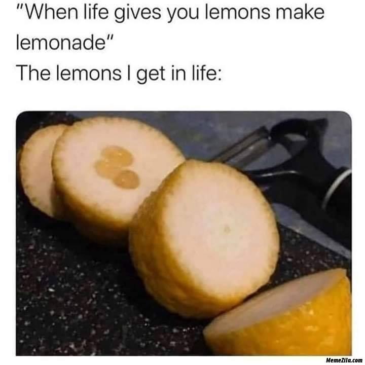When life gives you lemons make lemonade The lemons I get in life meme