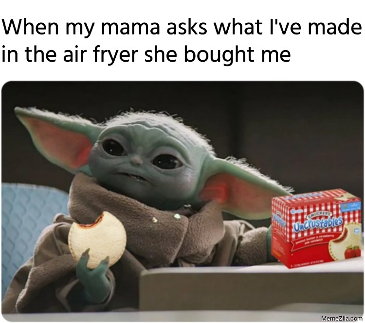 When my mama asks what I have made in the air fryer she bought me meme