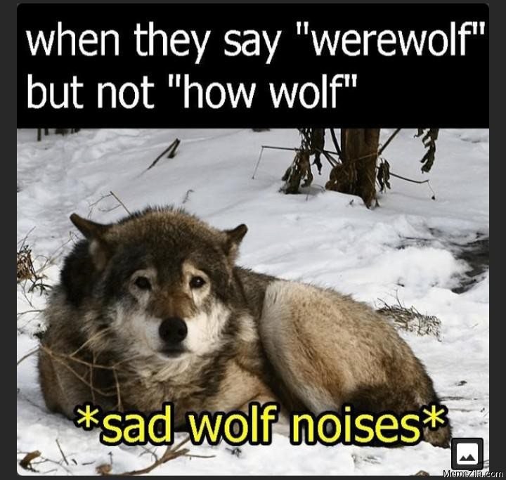 When they say werewolf but not how wolf Sad wolf noises meme