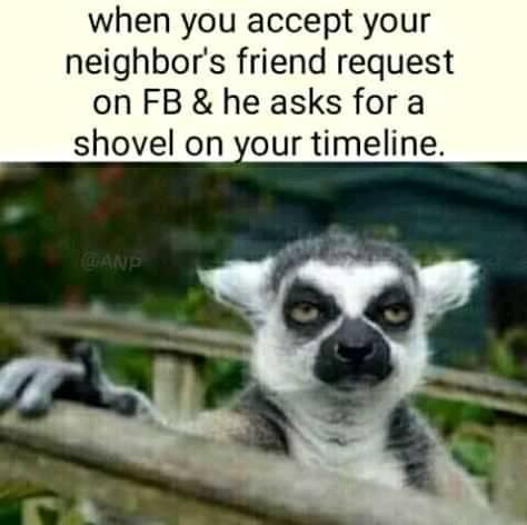 When you accept your neighbours friend request on fb and he ask for shovel on your timeline meme