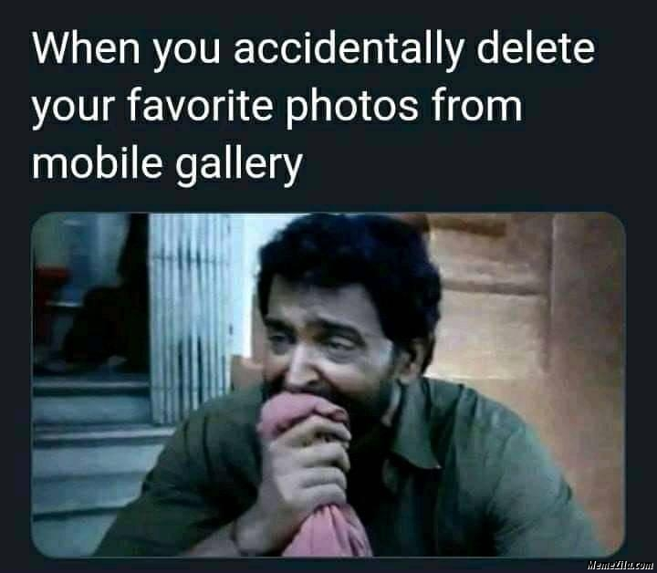 When you accidentally delete your favorite photos from mobile gallery meme