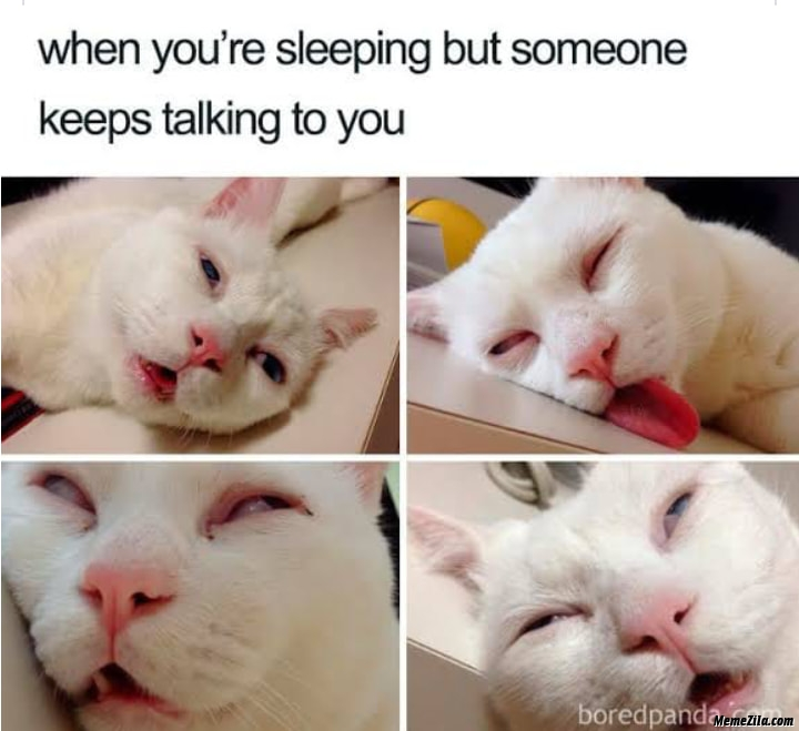 When you are sleeping but someone keeps talking to you meme