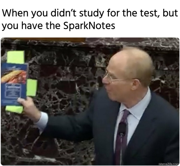 When you didnt study for the test but you have the SparkNotes meme