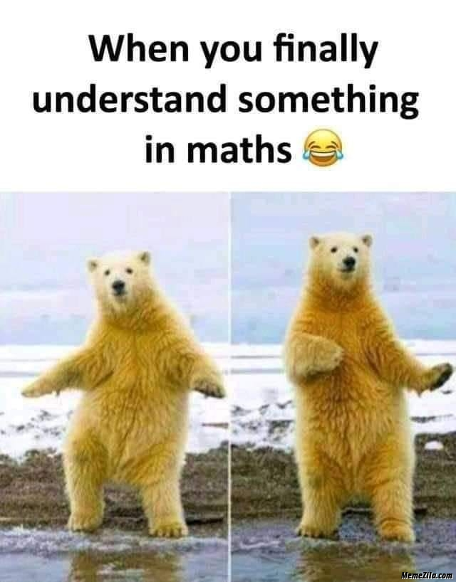 When you finally understand something in maths mean