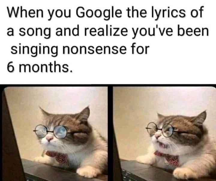When you google the lyrics of a song and realise you have been singing nonsense for 6 months meme