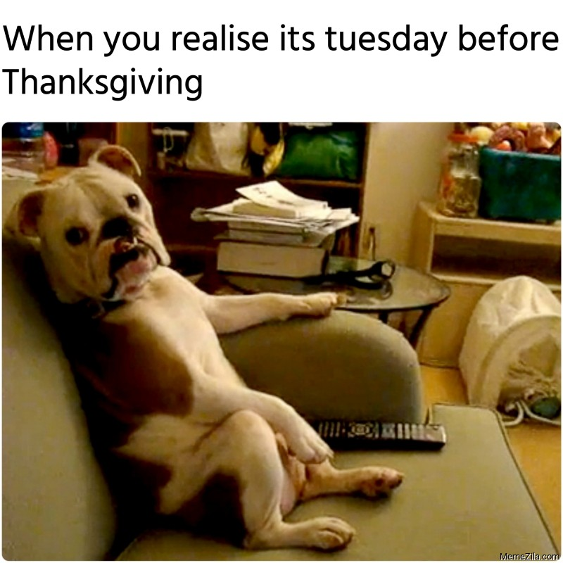 When you realise its tuesday before thanksgiving meme