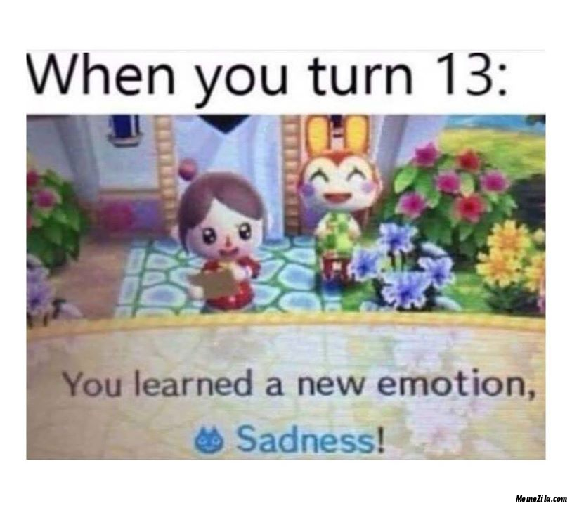 When you turn 13 You learn a new emotion Sadness meme