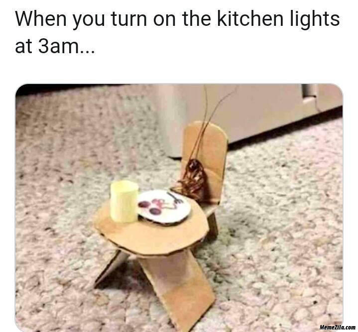 When you turn on the kitchen lights at 3:00 am