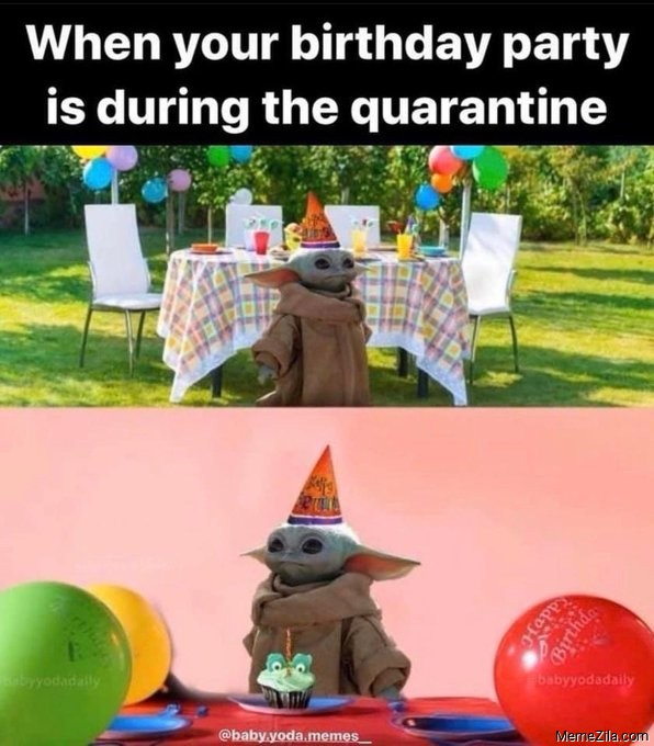 When your birthday party is during the quarantine meme