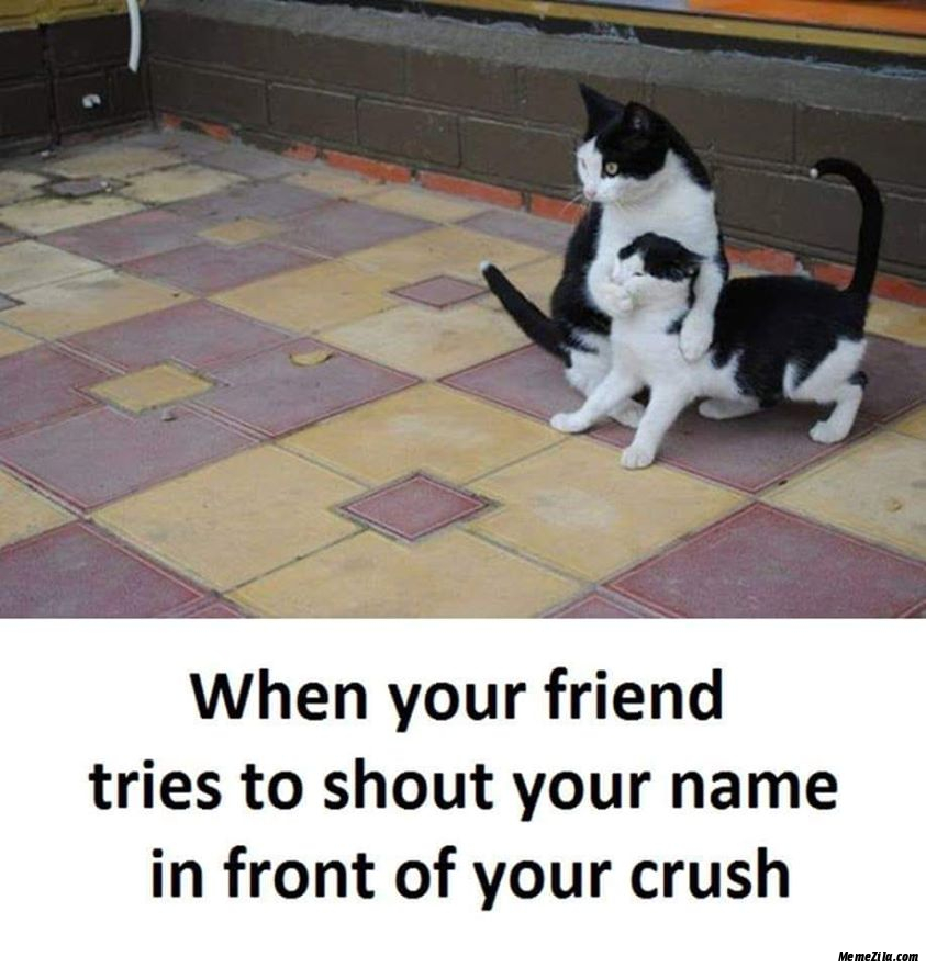 When your friend tries to shout your name in front of your crush meme
