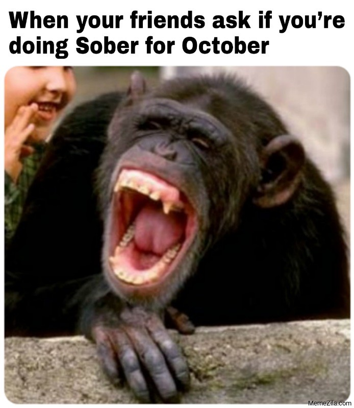 When your friends ask if you are doing sober for october meme