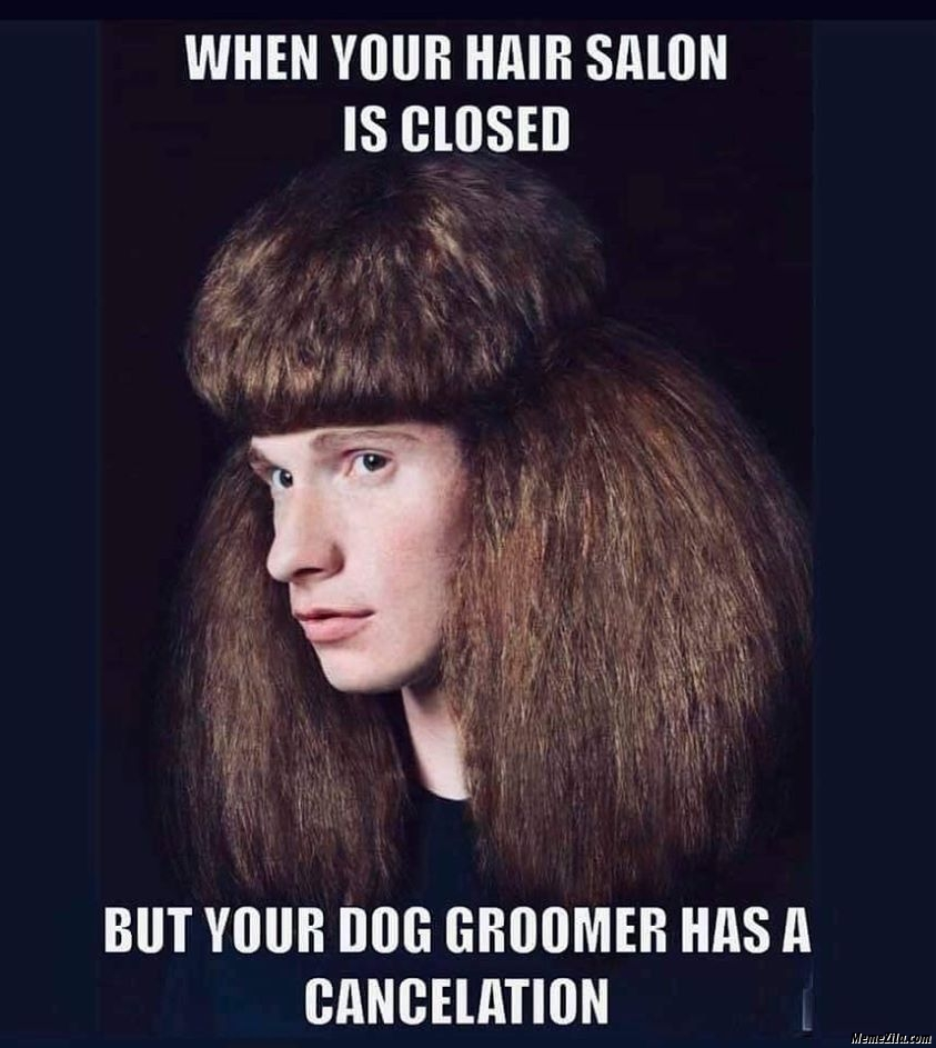 When your hair salon is closed but your dog groomer has a ...