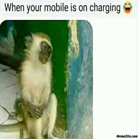 When your mobile is on charging meme