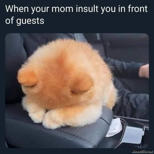 When your mum insult you in front of guests meme