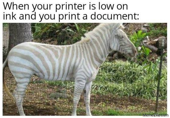 When your printer is low on ink and you print a document meme