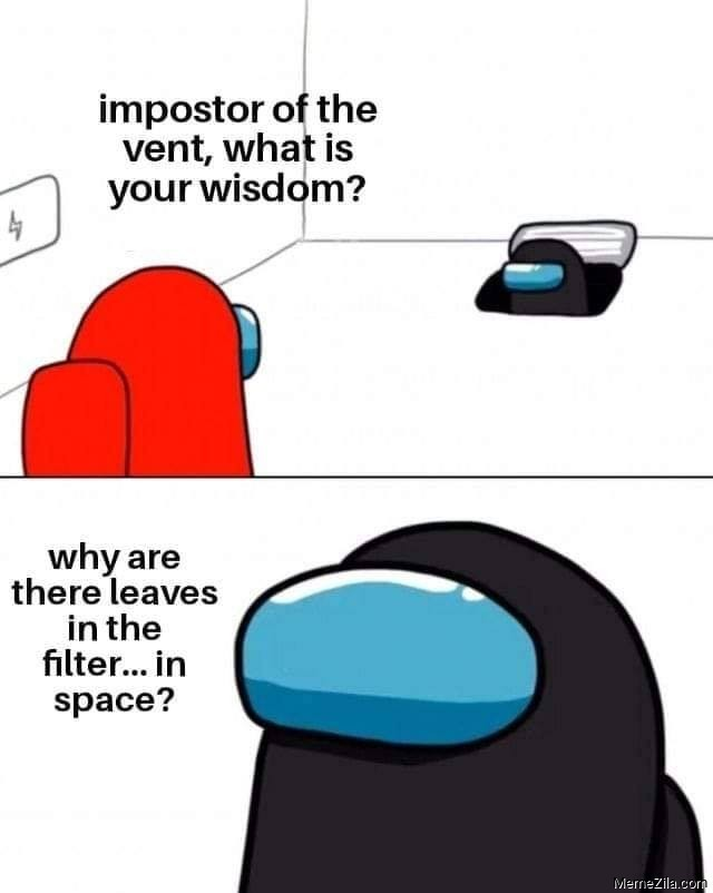Why are there leaves in the filter in space meme