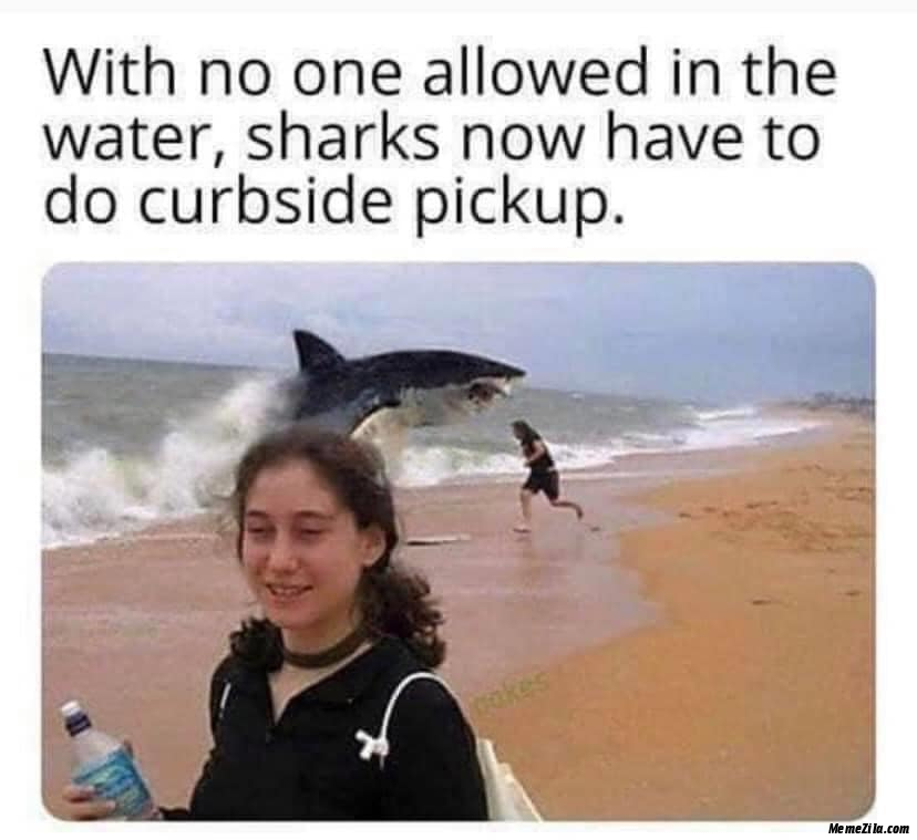 With no one allowed in the water Sharks now have to do curbside pickup meme