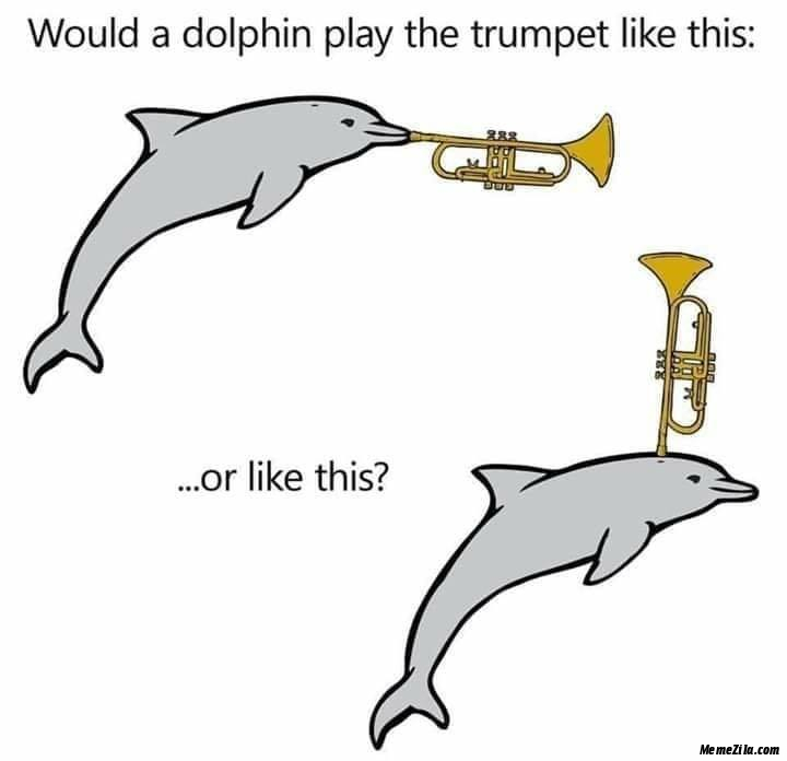 Would a dolphin play the trumpet like this or like this meme