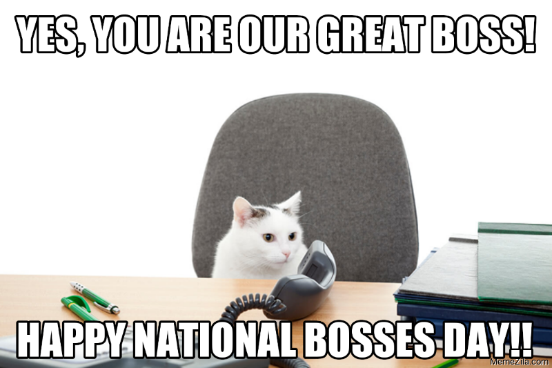 Yes you are our great boss Happy national bosses day meme