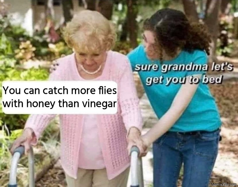 You can catch more flies with honey Sure grandma lets get you to bed meme