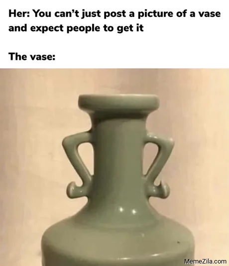 You can't just post a picture of a vase and expect people to get it meme
