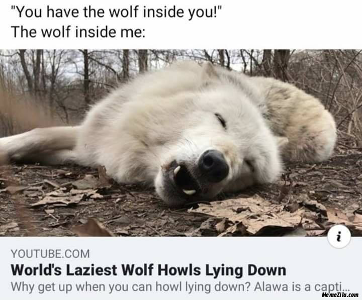 You have the wolf inside you The wolf inside me Worlds laziest wolf howls lying down meme