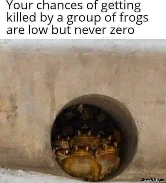Your chances of getting killed by a group of frogs are low but never zero meme