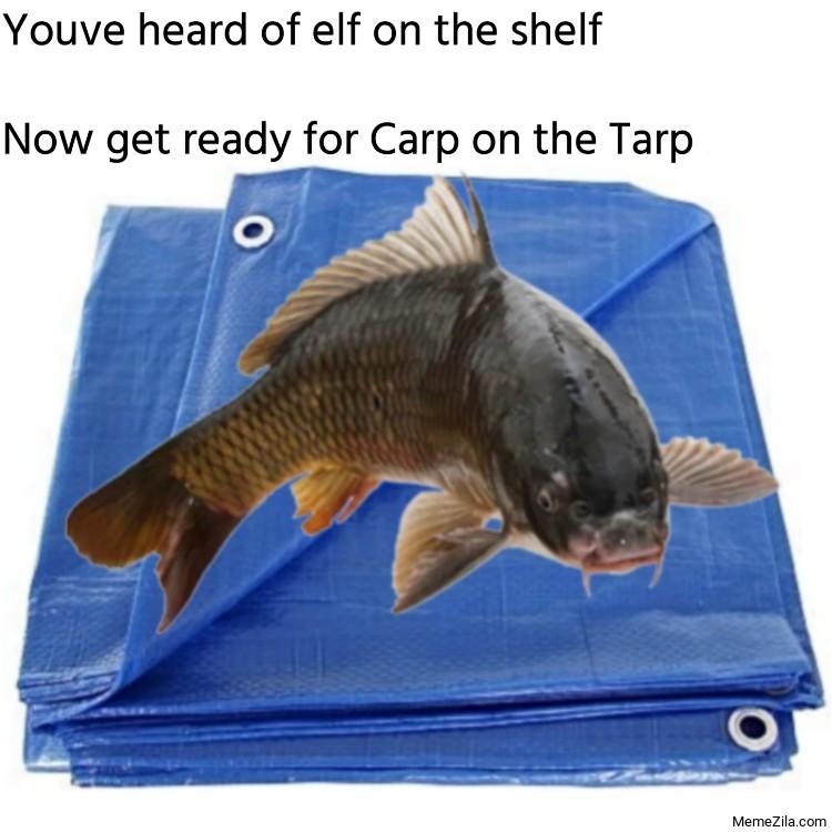 Youve heard of elf on the shelf Now get ready for Carp on the Tarp meme