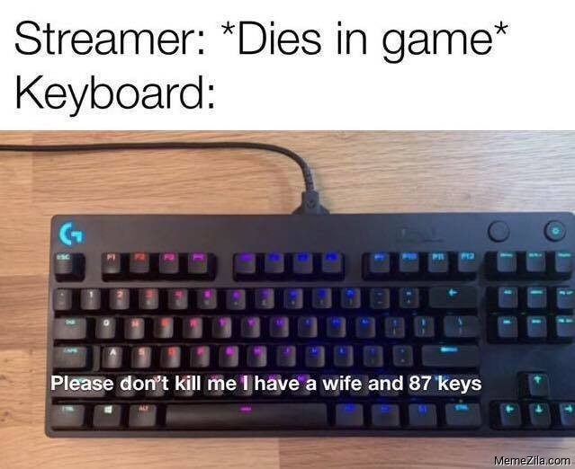 streamer dies in a game Meanwhile keyboard Please dont kill me I have a wife and 87 keys meme